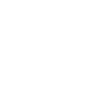 AES shield